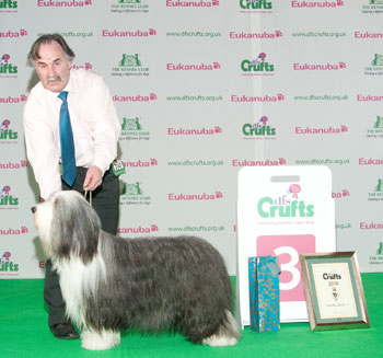 http://crufts.fossedata.co.uk/crpix/2010_PAS_G3.jpg