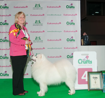 http://crufts.fossedata.co.uk/crpix/2010_PAS_G4.jpg