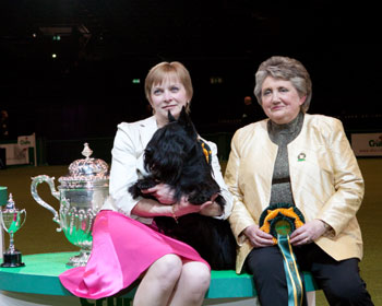 http://crufts.fossedata.co.uk/crpix/rbis2010.jpg