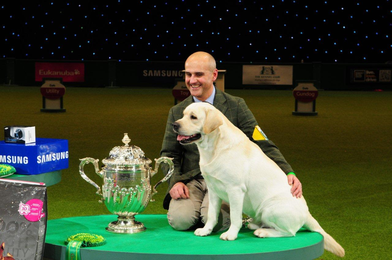 Crufts 2013 Results